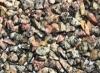 Edelsteinsplitter gebohrt Leopardenjaspis